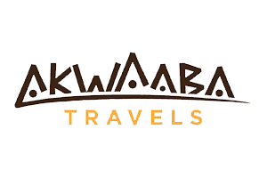 Akwaaba-travels-website